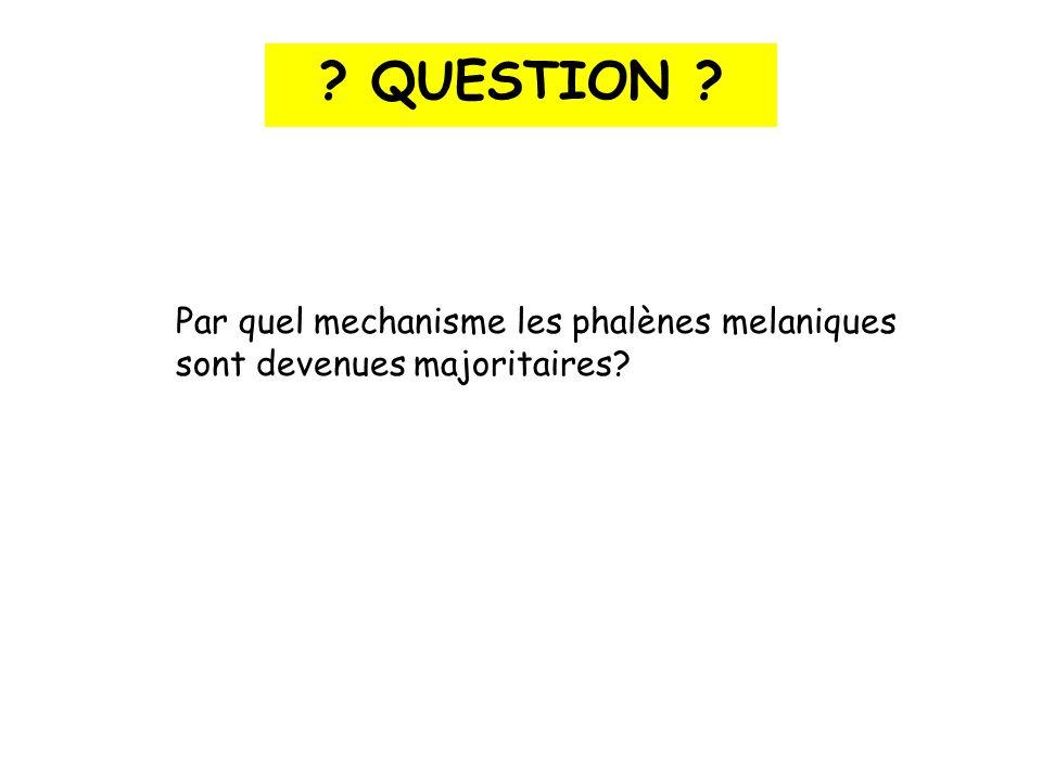 QUESTION Par quel mechanisme les phalènes melaniques sont devenues majoritaires