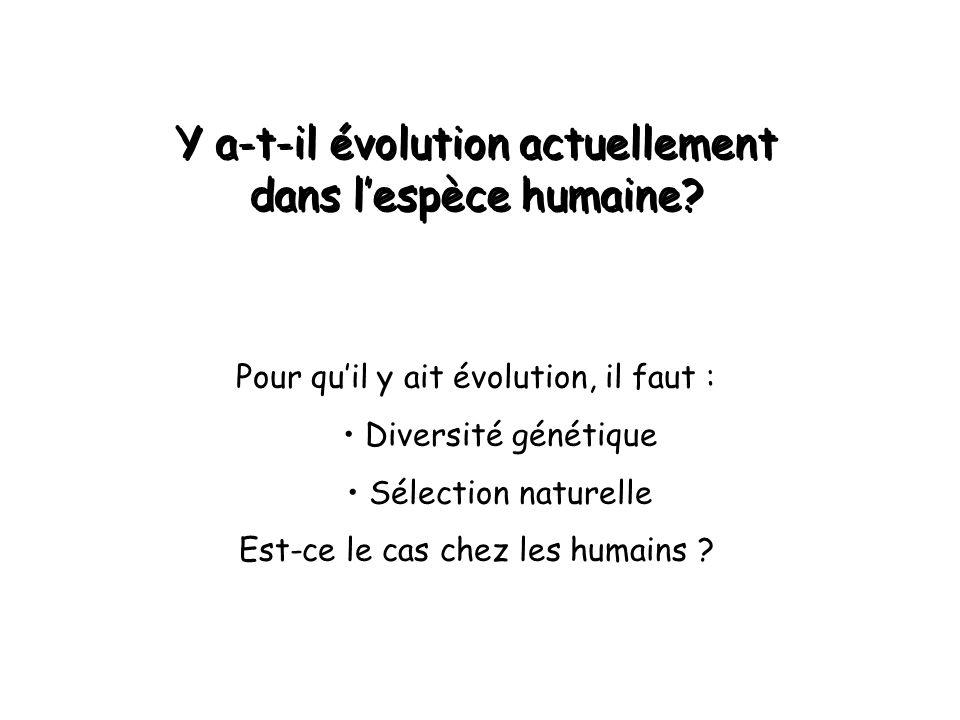 Y a-t-il évolution actuellement dans l'espèce humaine