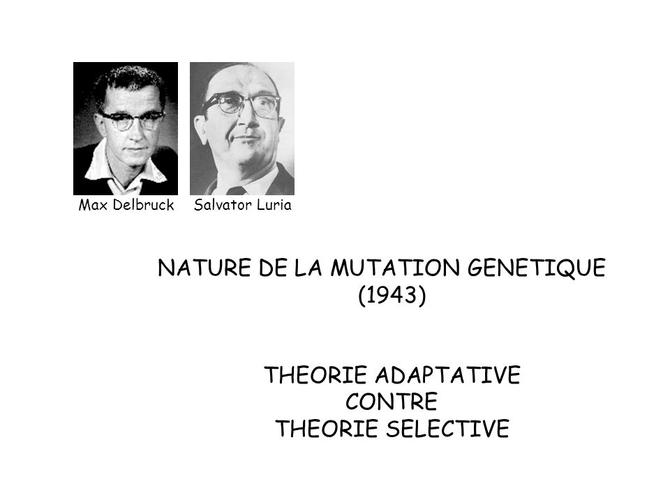 NATURE DE LA MUTATION GENETIQUE