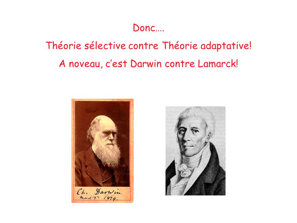Théorie sélective contre Théorie adaptative!
