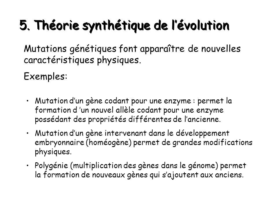 5. Théorie synthétique de l'évolution