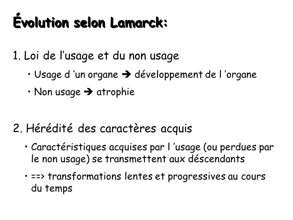 Évolution selon Lamarck:
