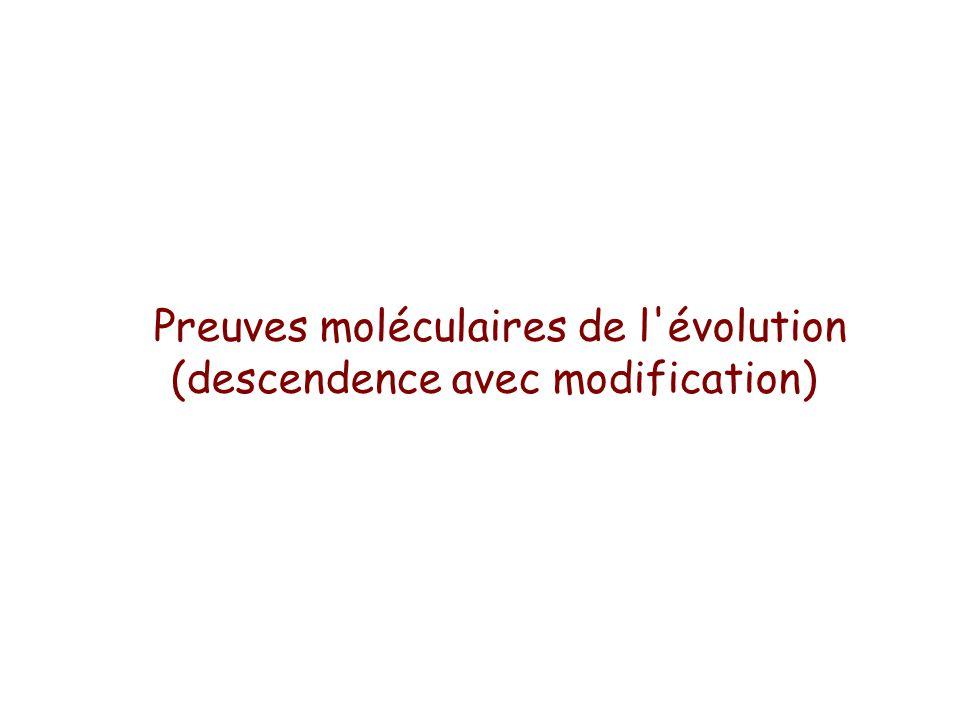 Preuves moléculaires de l évolution (descendence avec modification)