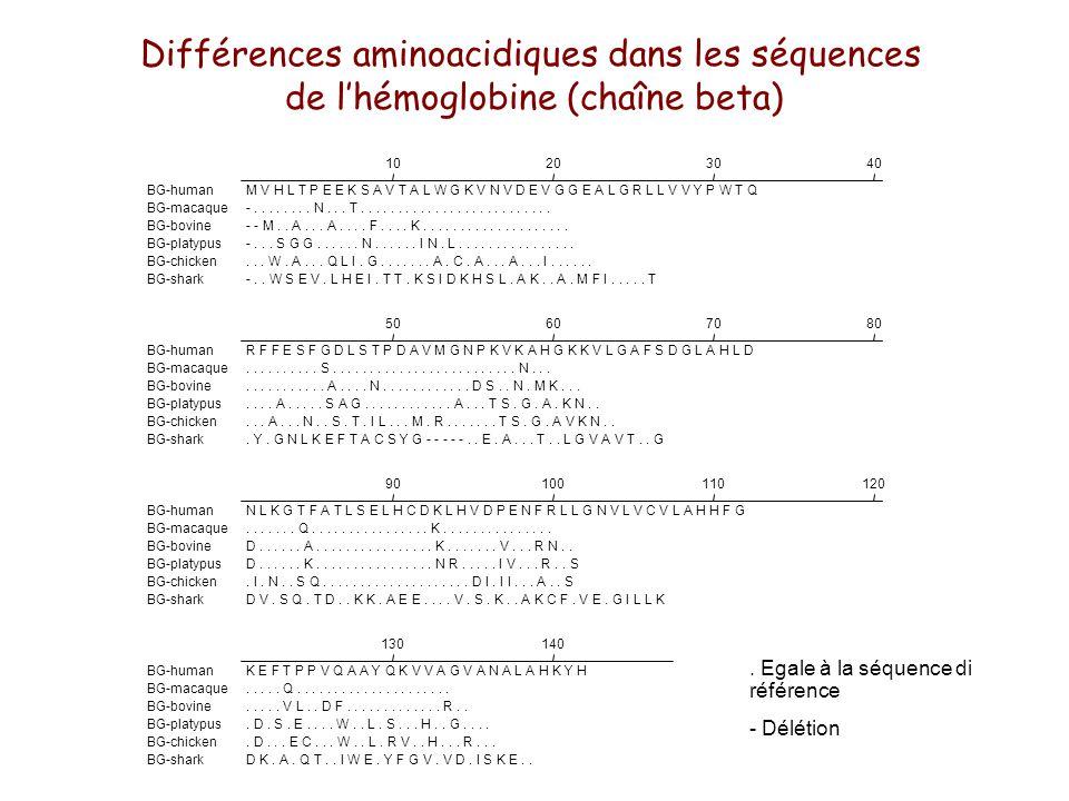 Différences aminoacidiques dans les séquences