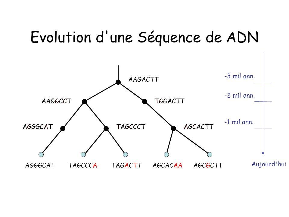 Evolution d une Séquence de ADN