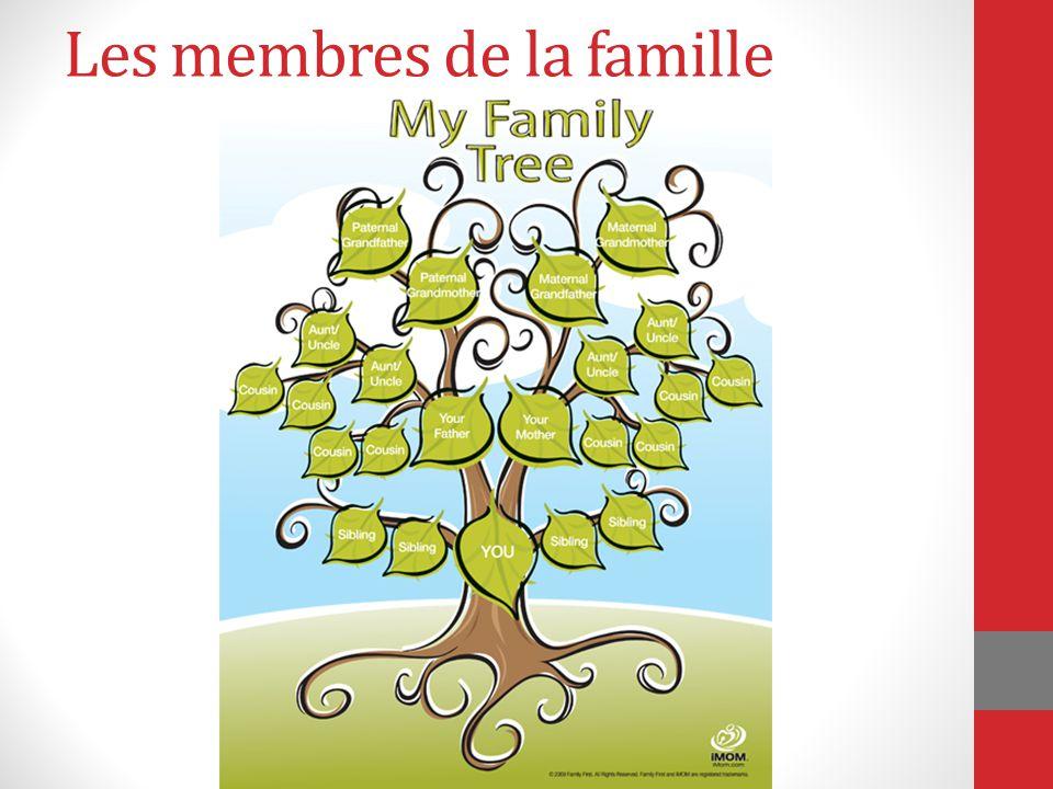 Les membres de la famille