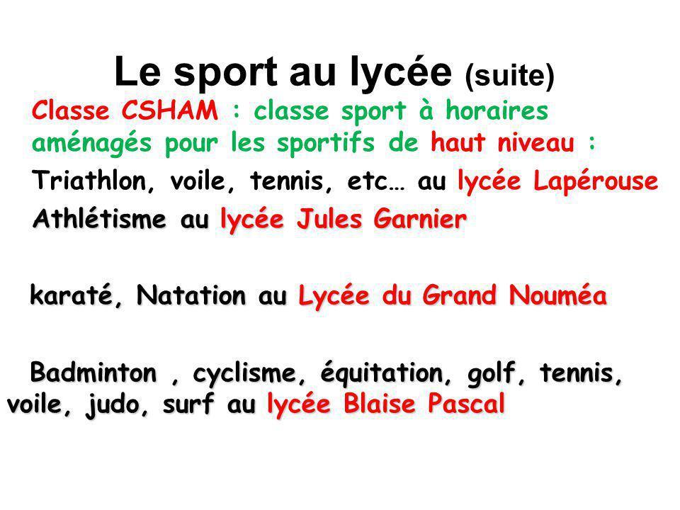 Le sport au lycée (suite)