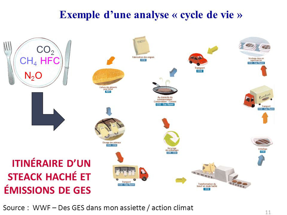 Exemple d'une analyse « cycle de vie »