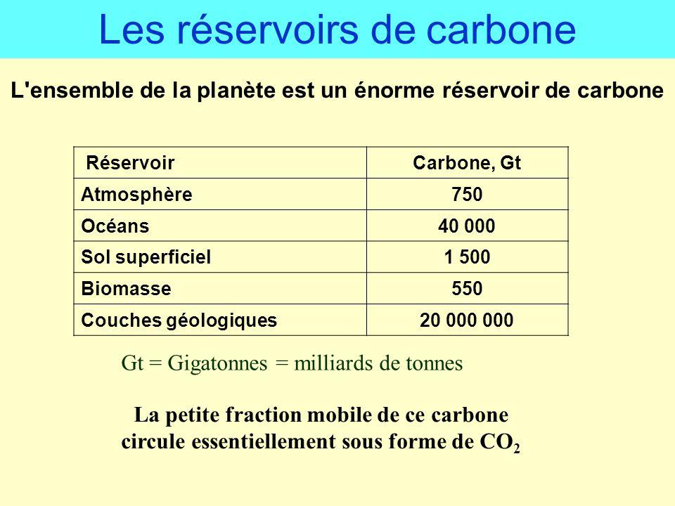 L ensemble de la planète est un énorme réservoir de carbone