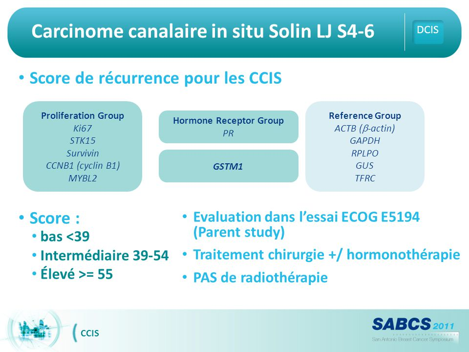 Carcinome canalaire in situ Solin LJ S4-6