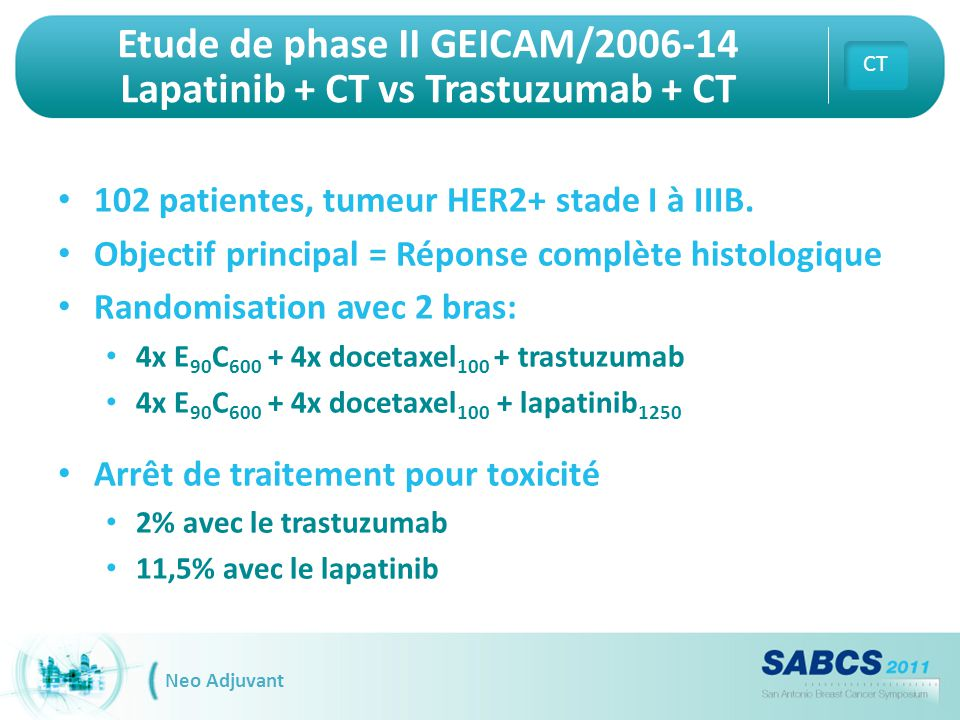 Etude de phase II GEICAM/2006-14 Lapatinib + CT vs Trastuzumab + CT