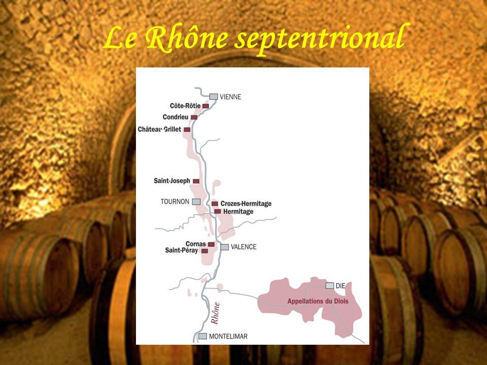 Le Rhône septentrional