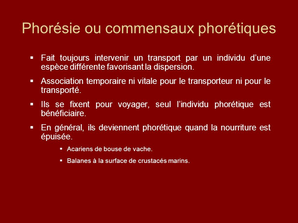 Phorésie ou commensaux phorétiques