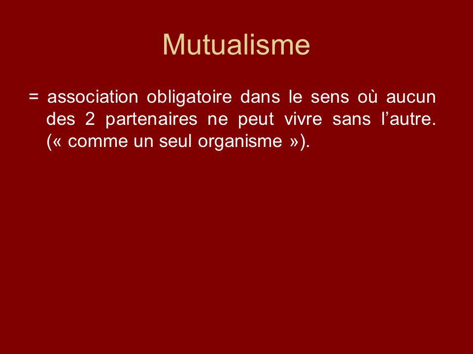 Mutualisme = association obligatoire dans le sens où aucun des 2 partenaires ne peut vivre sans l'autre.
