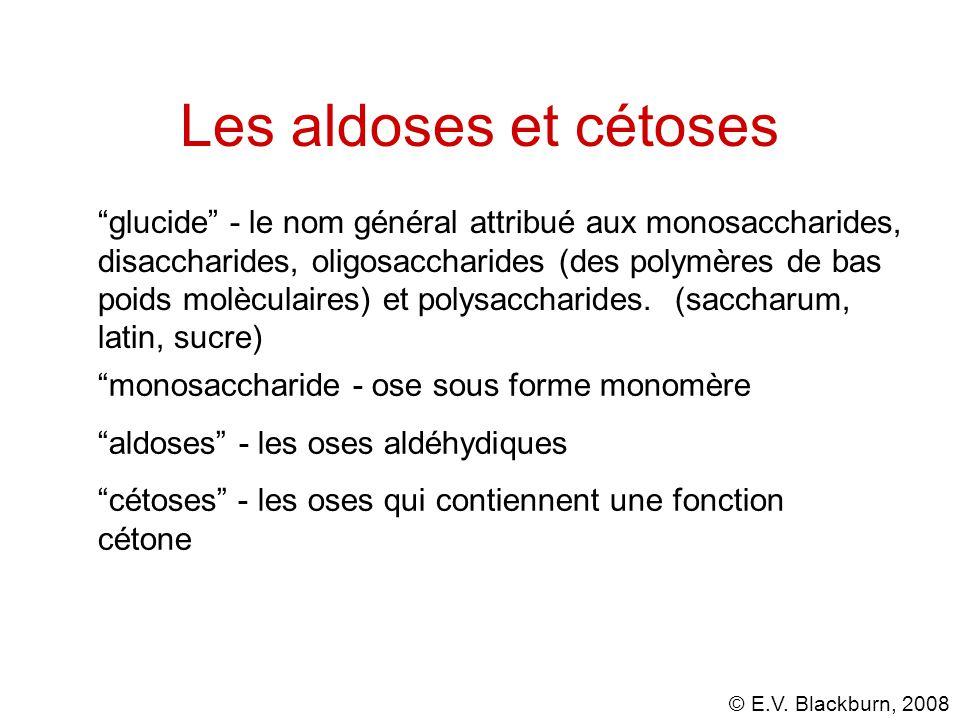 Les aldoses et cétoses