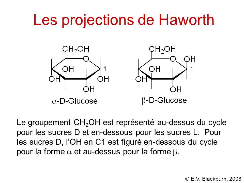 Les projections de Haworth