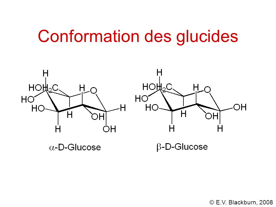 Conformation des glucides
