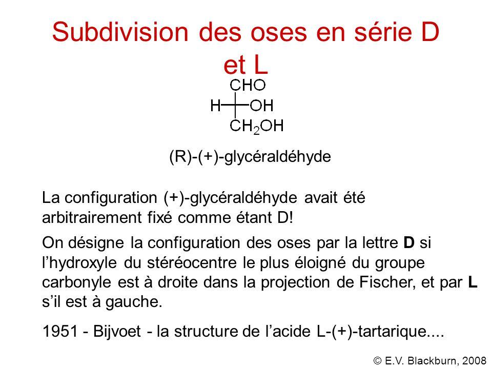 Subdivision des oses en série D et L
