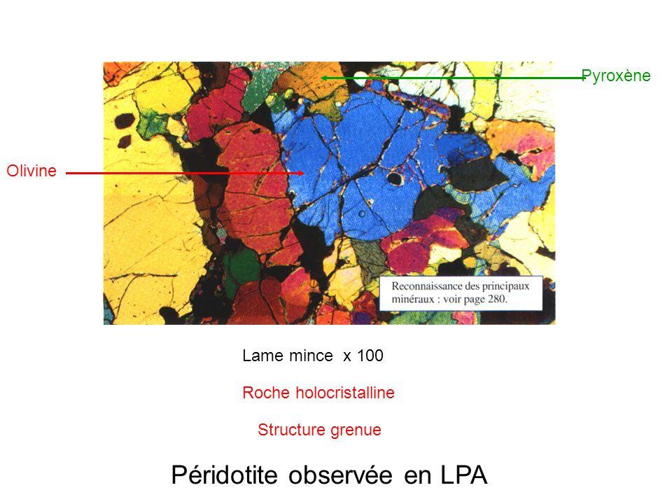 Péridotite observée en LPA