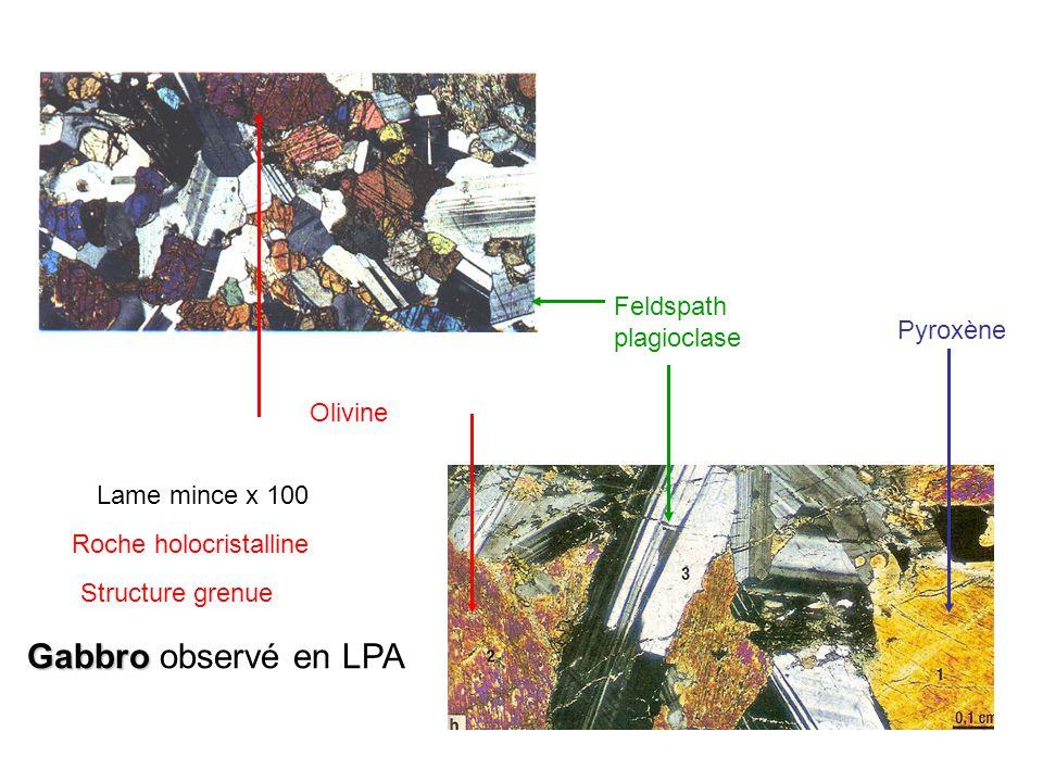 Gabbro observé en LPA Feldspath plagioclase Pyroxène Olivine
