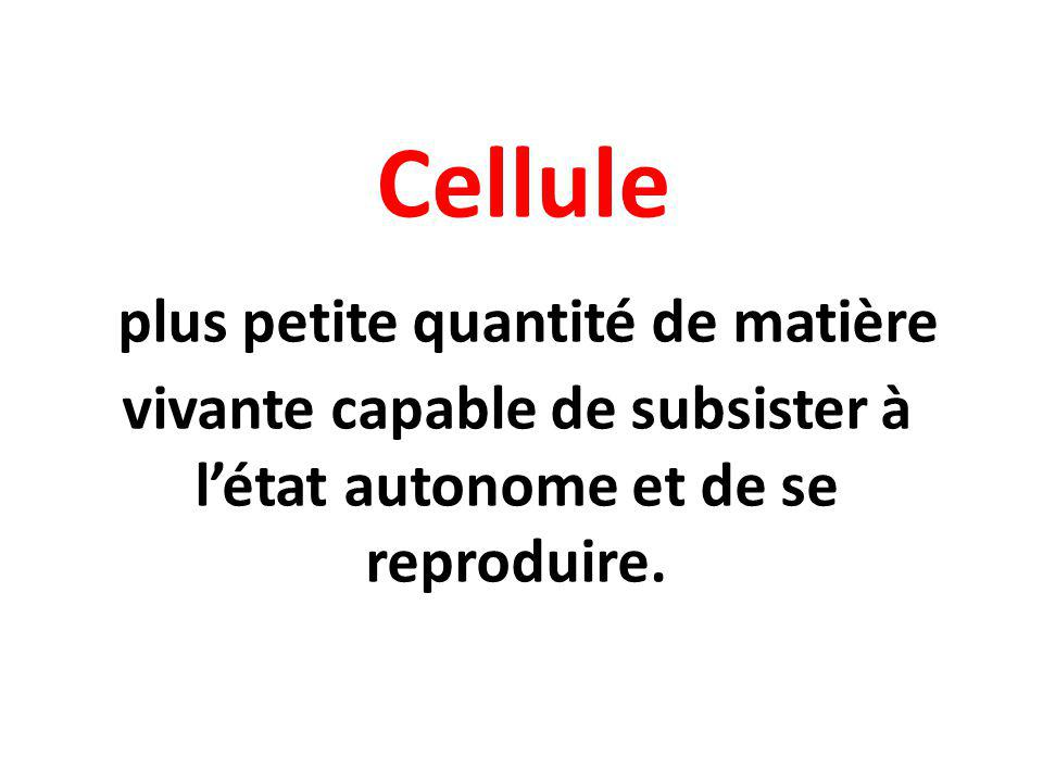 Cellule plus petite quantité de matière vivante capable de subsister à l'état autonome et de se reproduire.