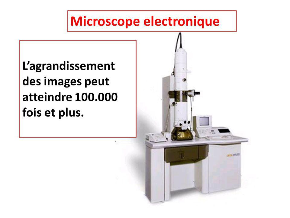 Microscope electronique