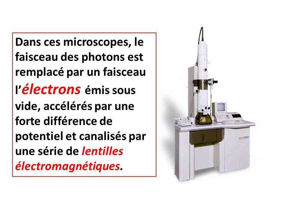 Dans ces microscopes, le faisceau des photons est remplacé par un faisceau l'électrons émis sous vide, accélérés par une forte différence de potentiel et canalisés par une série de lentilles électromagnétiques.