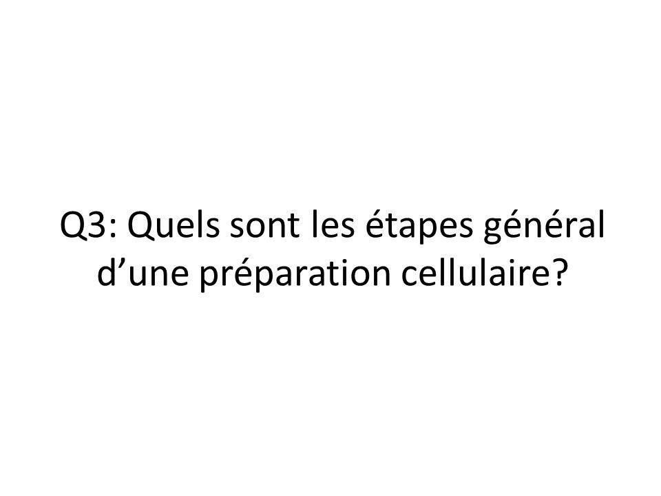 Q3: Quels sont les étapes général d'une préparation cellulaire