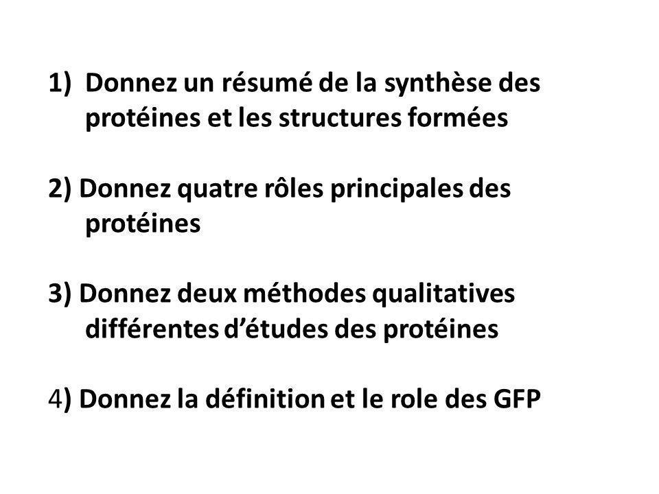 Donnez un résumé de la synthèse des protéines et les structures formées