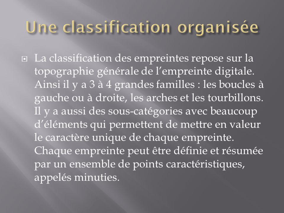 Une classification organisée