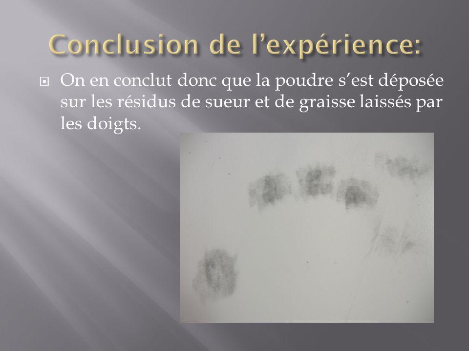Conclusion de l'expérience: