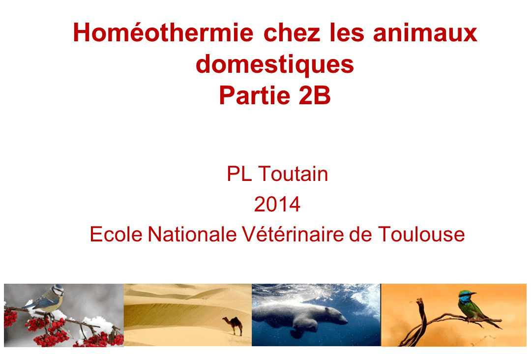 Homéothermie chez les animaux domestiques Partie 2B