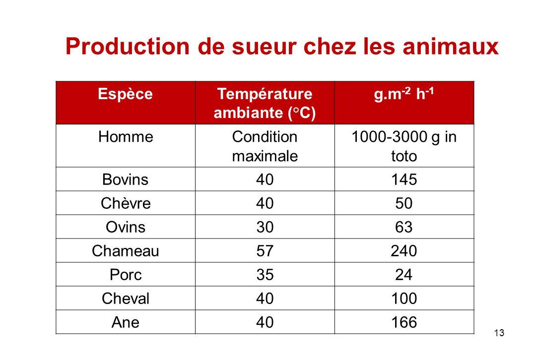 Production de sueur chez les animaux