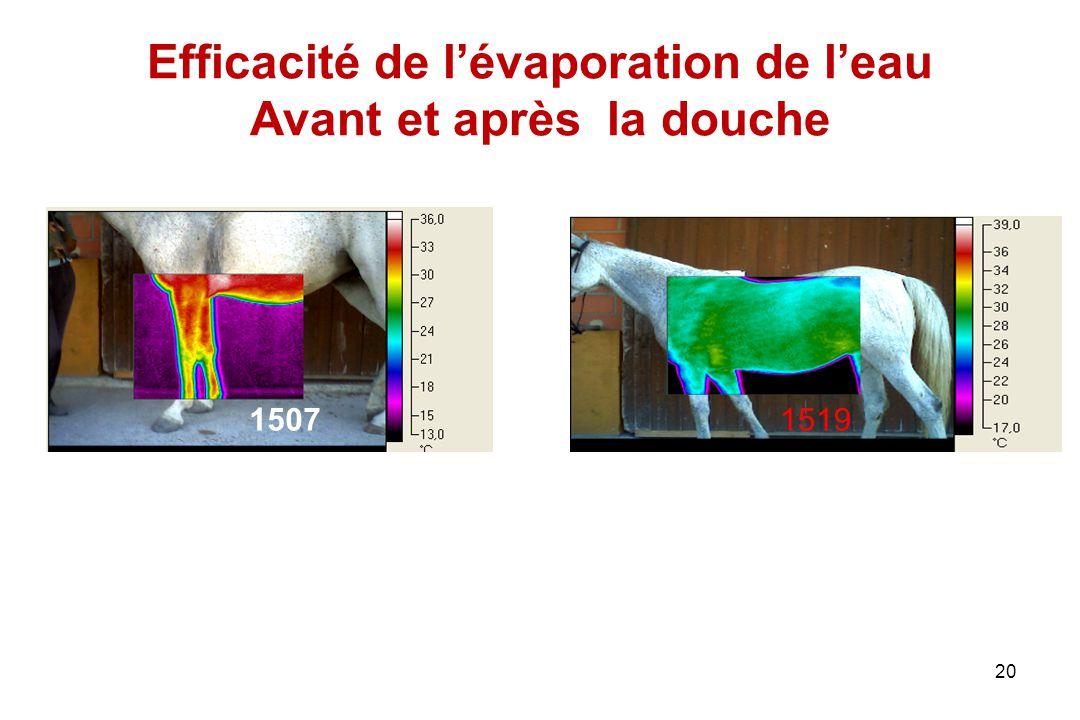 Efficacité de l'évaporation de l'eau Avant et après la douche