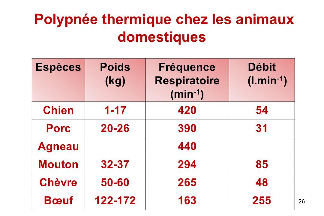 Polypnée thermique chez les animaux domestiques