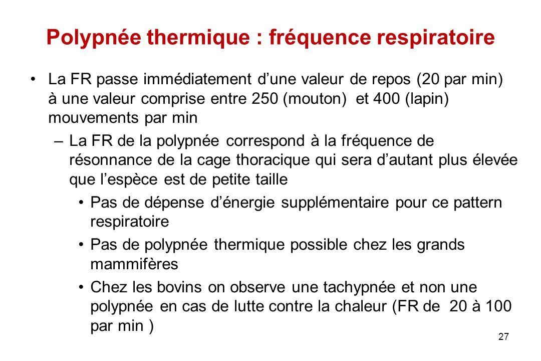 Polypnée thermique : fréquence respiratoire