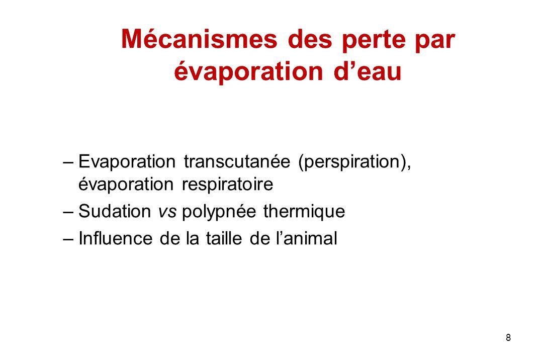 Mécanismes des perte par évaporation d'eau