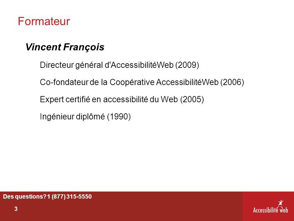 Formateur Vincent François Directeur général d AccessibilitéWeb (2009)