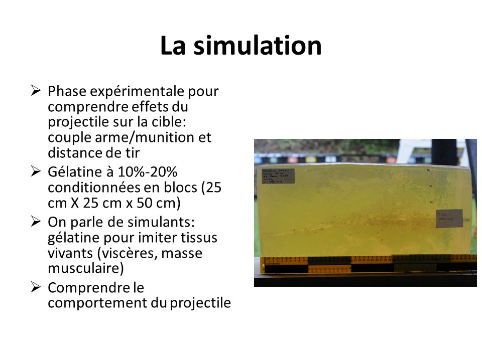 La simulation Phase expérimentale pour comprendre effets du projectile sur la cible: couple arme/munition et distance de tir.