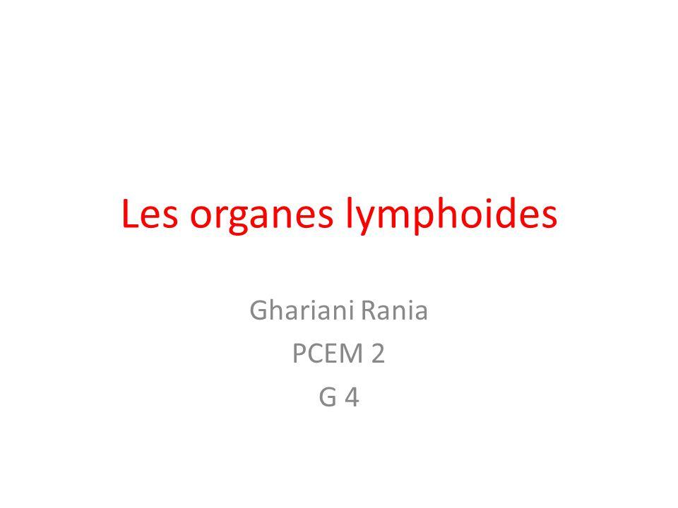 Les organes lymphoides