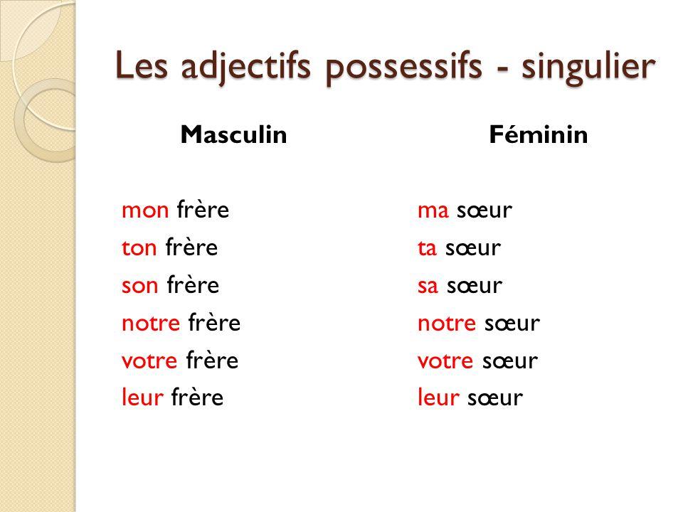 Les adjectifs possessifs - singulier