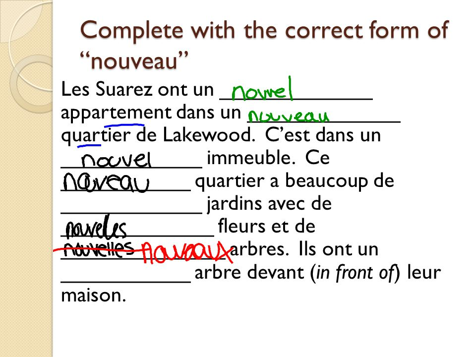 Complete with the correct form of nouveau
