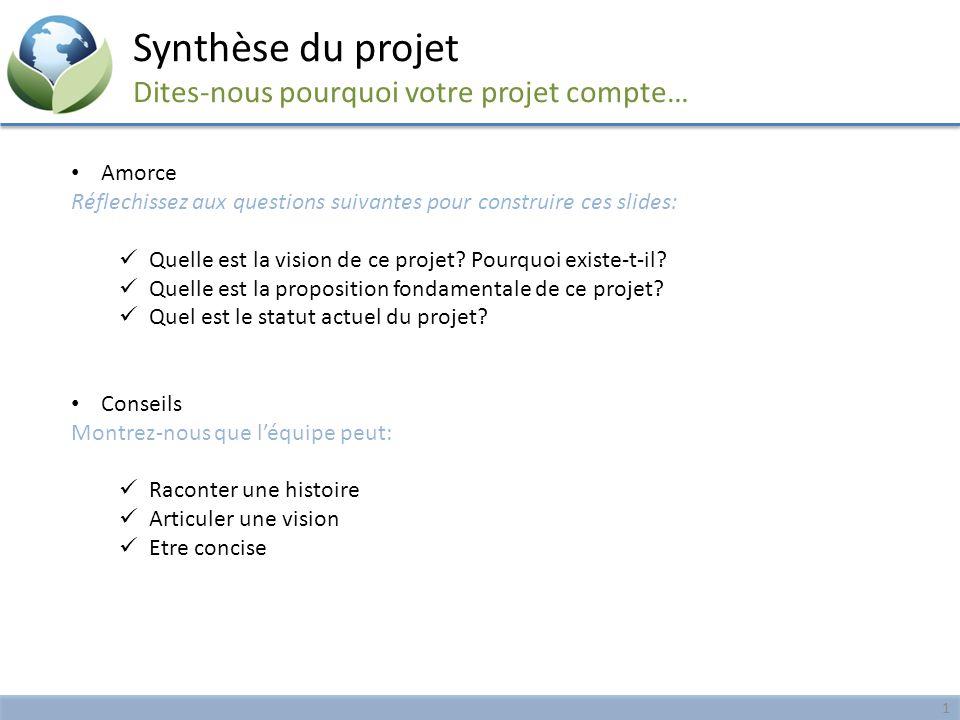 Synthèse du projet Dites-nous pourquoi votre projet compte…