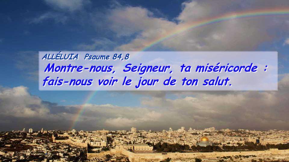 ALLÉLUIA Psaume 84,8 Montre-nous, Seigneur, ta miséricorde : fais-nous voir le jour de ton salut.