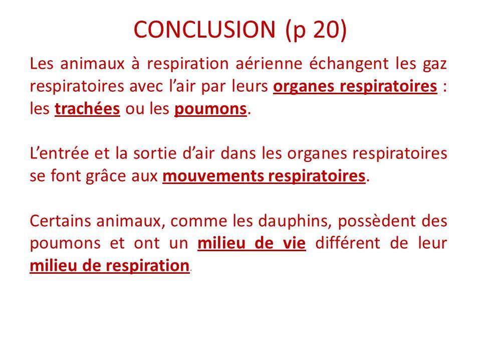 CONCLUSION (p 20)