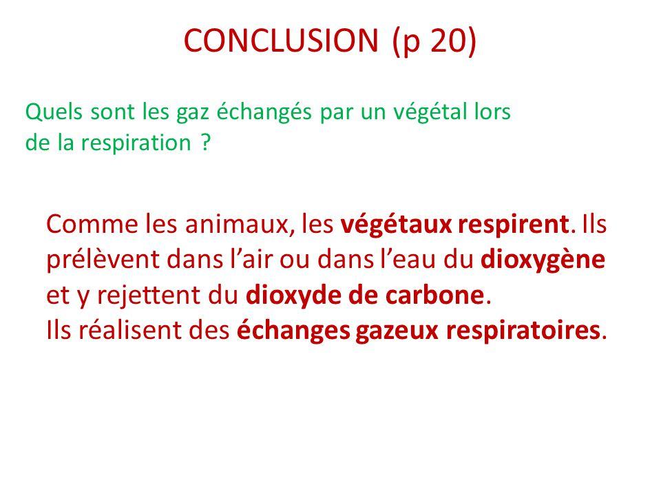 CONCLUSION (p 20) Quels sont les gaz échangés par un végétal lors de la respiration