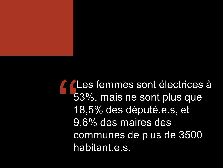 Les femmes sont électrices à 53%, mais ne sont plus que 18,5% des député.e.s, et 9,6% des maires des communes de plus de 3500 habitant.e.s.