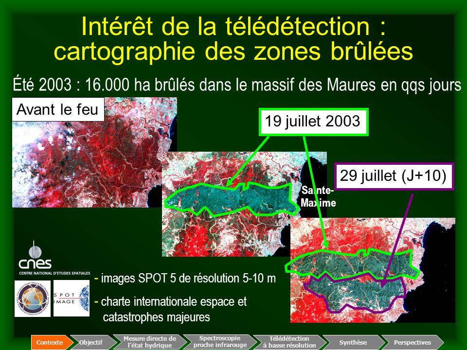 Intérêt de la télédétection : cartographie des zones brûlées