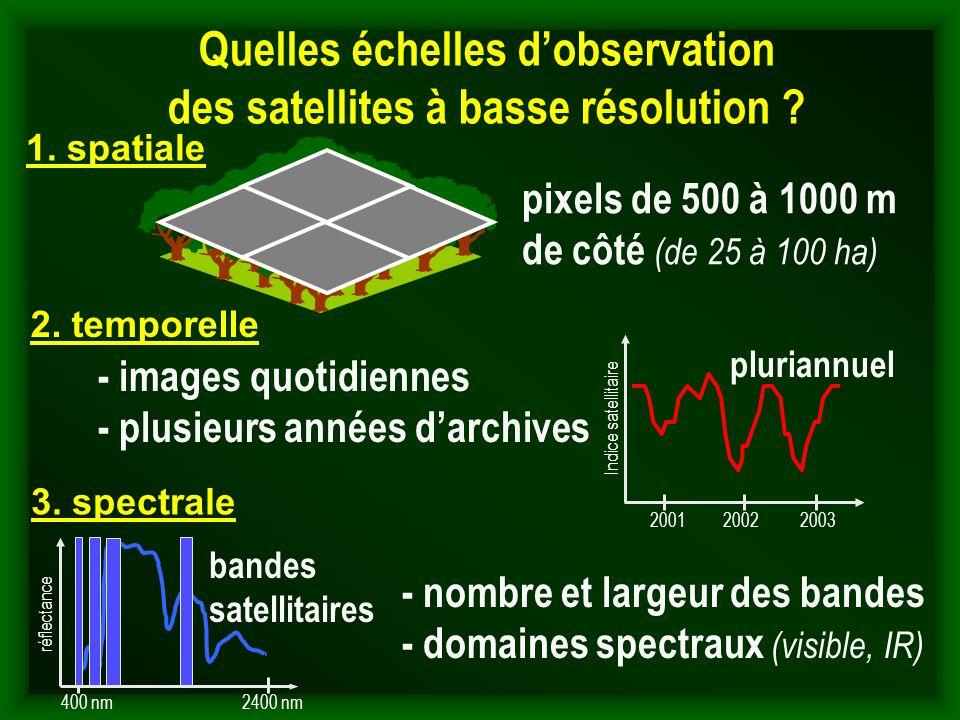 Quelles échelles d'observation des satellites à basse résolution