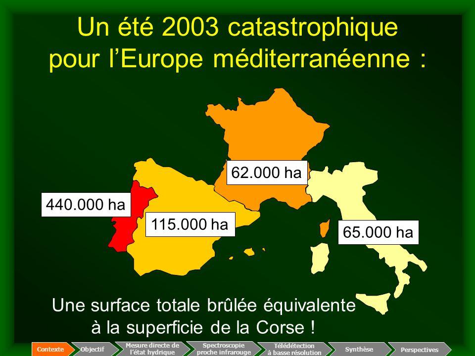 Un été 2003 catastrophique pour l'Europe méditerranéenne :
